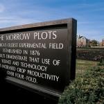 Morrow Plots is an Urbana Legend