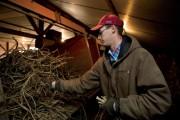 Illinois Horseradish Farmer Jeff Heepke, Edwardsville, IL