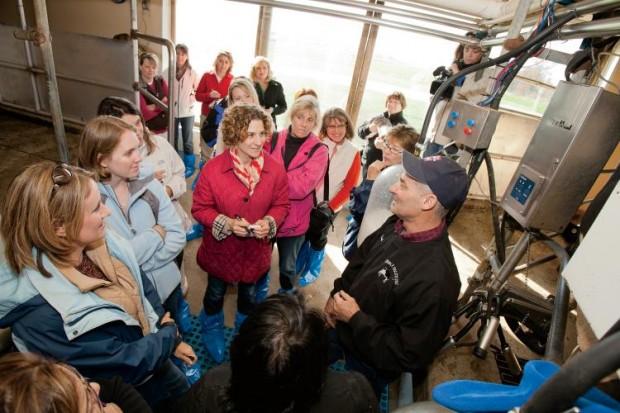 Mommy bloggers with Illinois Farm Families meet a dairy farmer