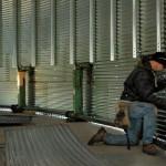 Grain Storage Gains Momentum