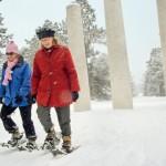 Snow Day at Morton Arboretum