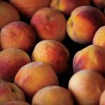 Farm Focus: Peaches