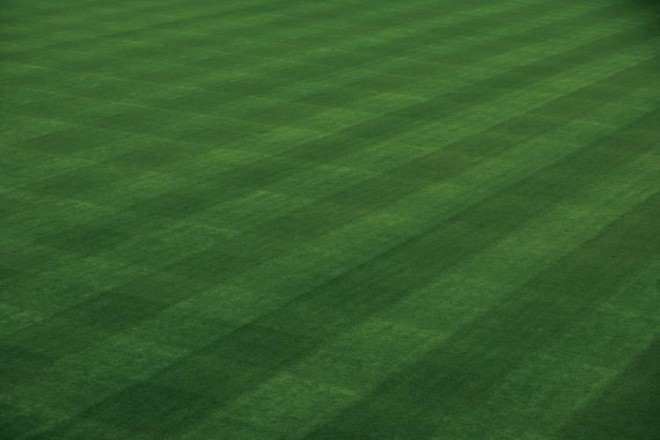 The groundskeepers at Wrigley Field, in Chicago, home of the Cubs, are among the best qualified to give lawn care tips because they have to deal with keeping grass healthy every day.