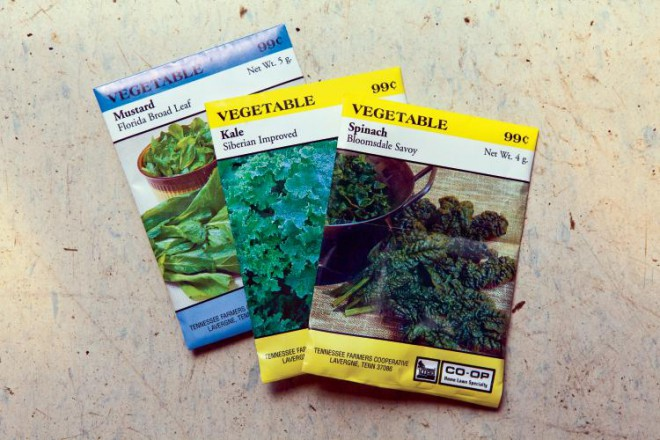 Vegetable seed packets for planting your garden