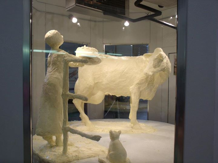 Illinois State Fair Butter Cow