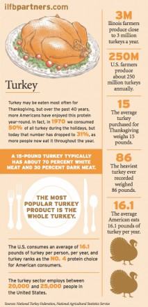 turkey farm facts