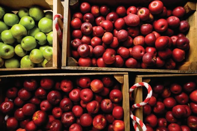 Murphysboro Apple Festival