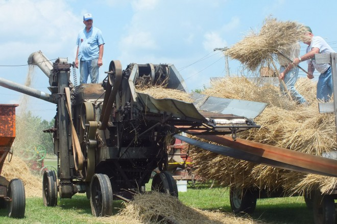 mill road threshermen's show