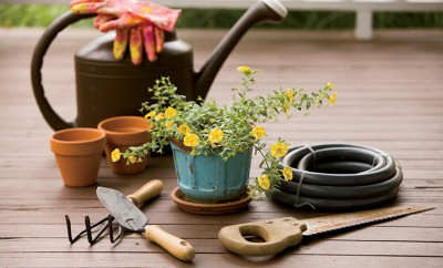 tips for the aging gardener
