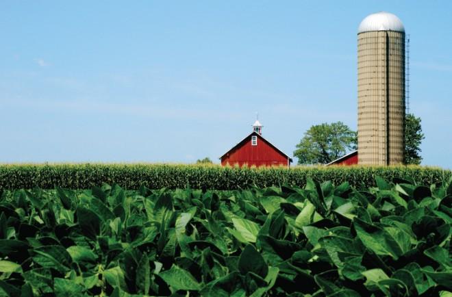 Illinois soybean farm landscape red barn and silo