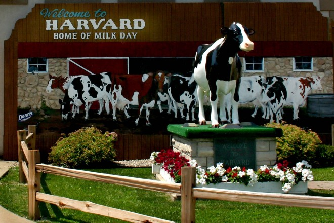Harvard Milk Days