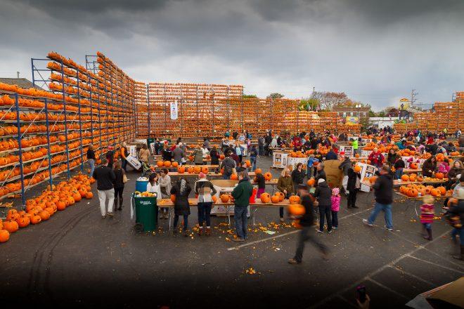 Highwood Pumpkin Festival