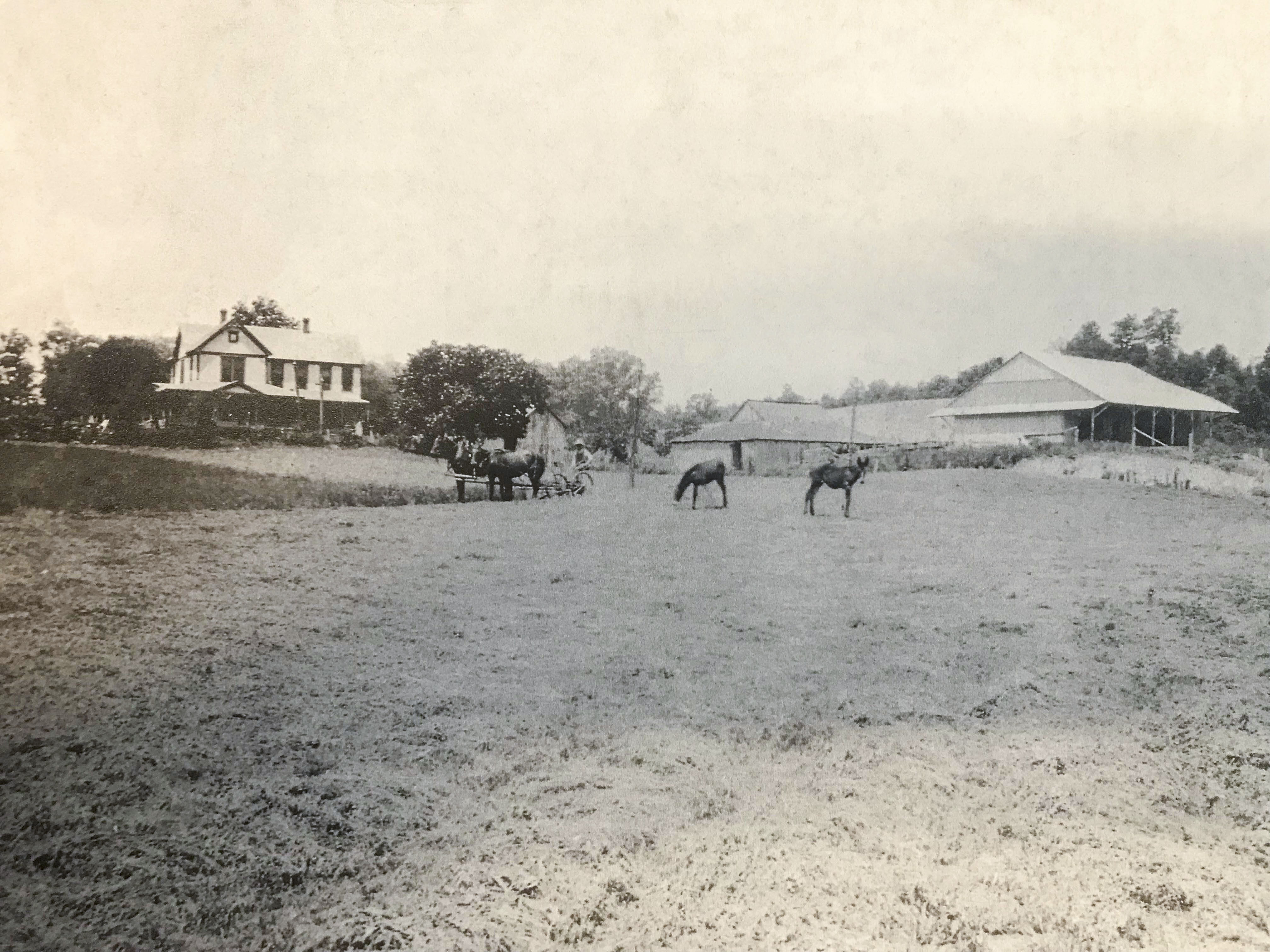 Brown Bicentennial Farm