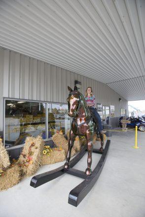 Casey illinois big Rocking Horse