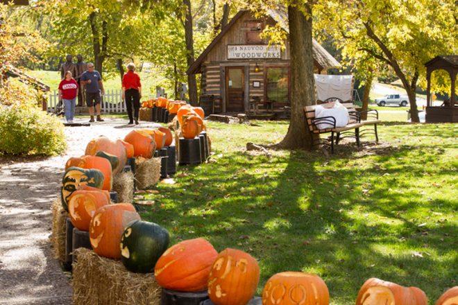 Pumpkin Walk.jpg