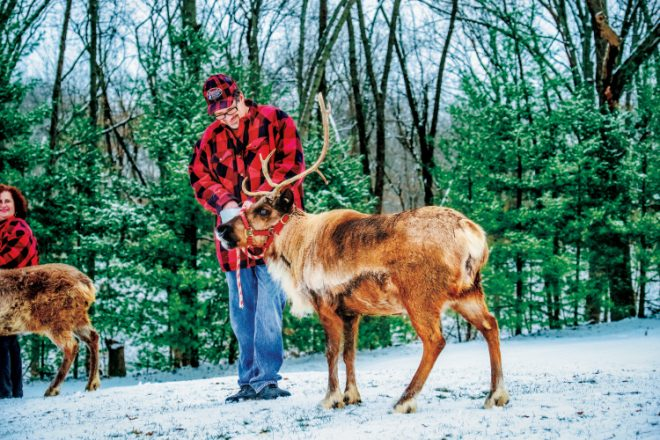 Scott and Tracy Snowman run Snowman's Reindeer Farm in Canton IL
