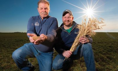 Harold Wilken and his son, Ross, grow organic wheat and other crops on their family farm in Ashkum
