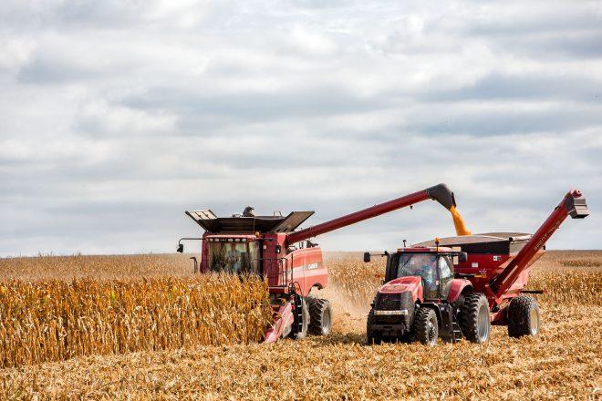 corn_harvest_McLean 10_17 37